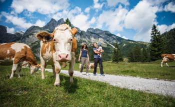 Werfenweng im Salzburger Land